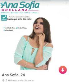 5_de_mayo_diario_ana_sofia_orellana_panal_02