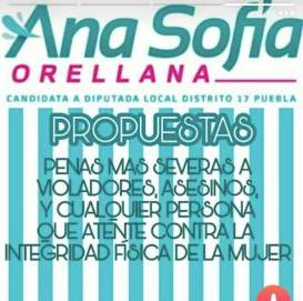 5_de_mayo_diario_ana_sofia_orellana_panal_03